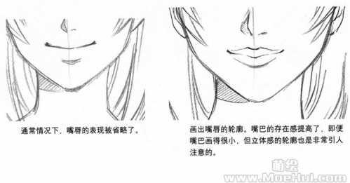 Ⅱ.嘴巴的结构与比例